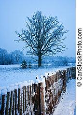 beau, hiver scénique