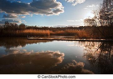 beau, image, de, coucher soleil, paysage, de, bois, peche, jetée, sur, calme, lac, à, clair, réflexions