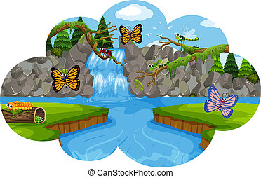 beau, insecte, paysage