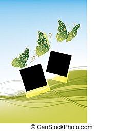 beau, insertion, papillons, photos, arrière-plan vert, ton
