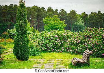 beau, jardin, ruelle, landscaping, park., conception