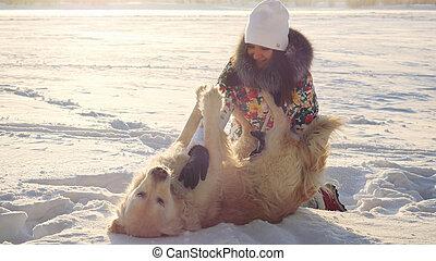 beau, jeux, hiver, chien, ensoleillé, neige, jeune, coucher soleil, temps, pendant, girl, heureux, jour, retriever