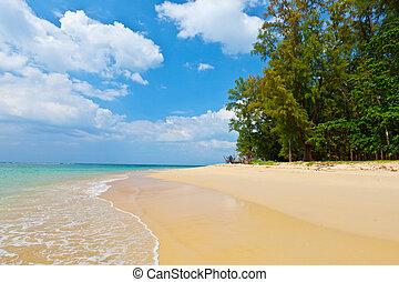 beau, journée, exotique, mer, plage, paysage
