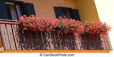 beau, lotissements, fleuri, géraniums, balcon
