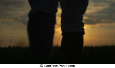 beau, marche, champ, coucher soleil, fond, homme