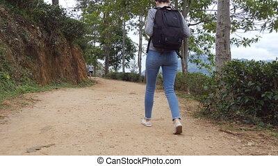 beau, marche, dos, femme, paysage, touriste, lifestyle., sac à dos, jeune, exotique, arrière-plan., aller, montagnes, femme, road., nature, piste, actif, long, arrière, sain, monter, randonneur, vue