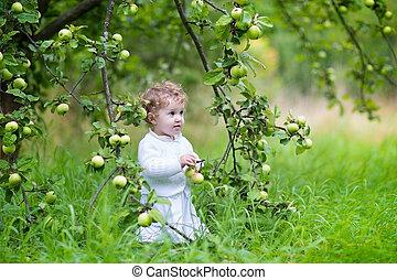 beau, marche, jardin, mûre, pommes, dorlotez fille, cueillette