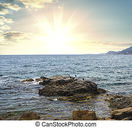 beau, marine, levers de soleil