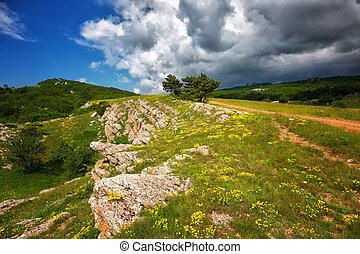 beau, montagne, été, ah-petri, plateau, crimea, jour, paysage