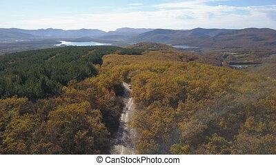 beau, montagne, aérien, conduite, voiture, autumn., route, voiture., forêt, trekking, petit, par, montagnes., coup, vue