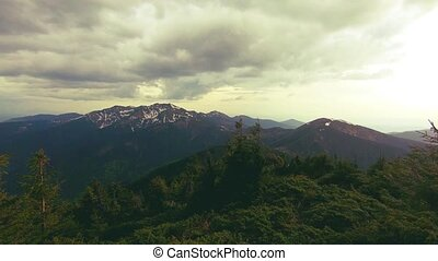 beau, montagne, forêt, panorama