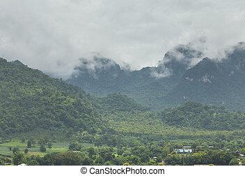 beau, montagne, paysage, brumeux