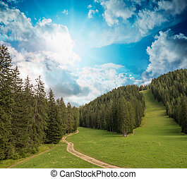 beau, montagne, scénario, alpin, summer., paysage, sunset.