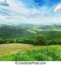 beau, montagnes