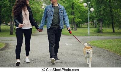 beau, mouvement, marche, lent, coup, chaussures, vêtements, freedom., parc chien, propriétaires, chiot, promenade, herbe, vert, bas, petit, visible., apprécier, sentier, aimer