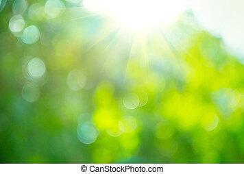 beau, nature, brouillé, arrière-plan., vert, bokeh
