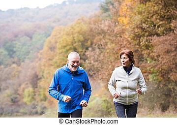beau, nature, couple, ensoleillé, courant, automne, dehors, personne agee