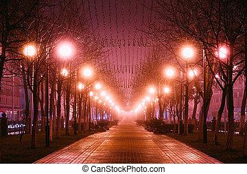 beau, nuit, fog., rue, ville, avenue, matin, parc