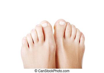 beau, orteils, -, haut, pieds, femme, fin