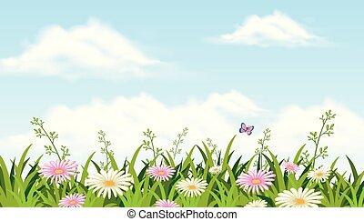 beau, papillon, fleur, champ