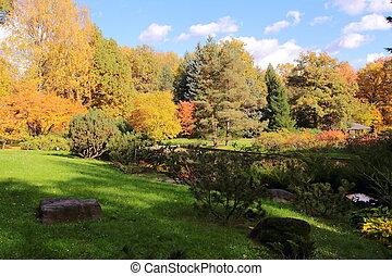 beau, parc, automne, jour ensoleillé