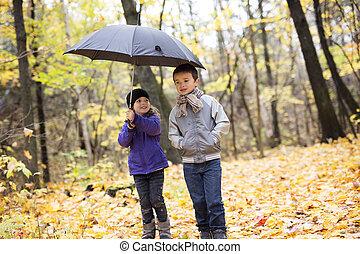 beau, parc, jouer, automne, enfants, heureux