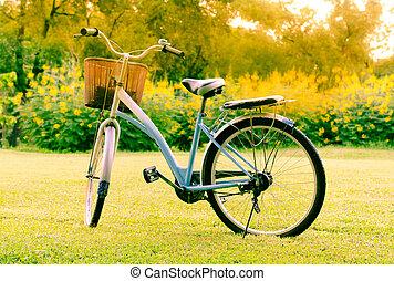 beau, parc, vélo, paysage