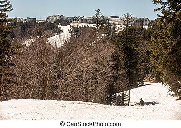 beau, paysage, autour de, nature, virginie occidentale, raquette, recours, cass, ski