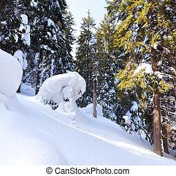 beau, paysage hiver, à, neige a couvert arbres