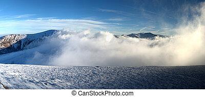 beau, paysage hiver