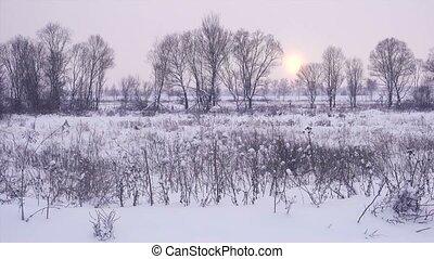 beau, paysage hiver, sunset.
