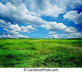 beau, paysage, nature
