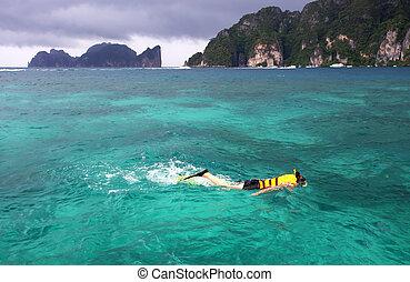 beau, paysage, phi, île, clair, mer, thaïlande