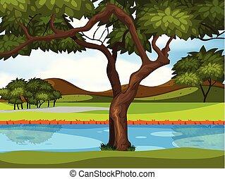 beau, paysage rivière