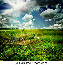 beau, paysage rural, nature
