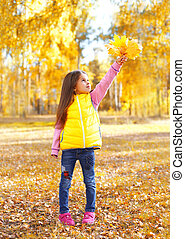 beau, peu, jaune, jouer, automne, pousse feuilles, enfant, girl, jour, érable