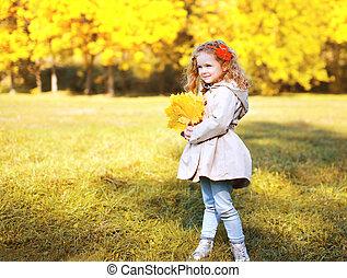 beau, peu, pousse feuilles, photo, jaune, automne, th, girl, érable
