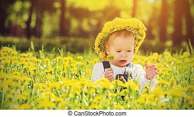 beau, peu, pré, nature, couronne, parc, jaune, pissenlits, dorlotez fille, fleurs, heureux