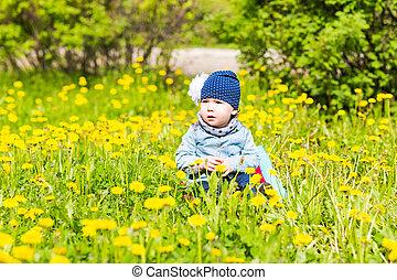 beau, peu, pré, nature, séance, jaune, park., vert, dorlotez fille, fleurs, pissenlits, heureux
