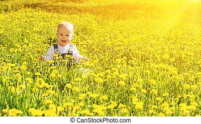 beau, peu, pré, nature, séance, parc, jaune, pissenlits, vert, dorlotez fille, fleurs, heureux