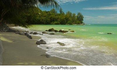 beau, phuket, non, île, gens., exotique, thaïlande, plage