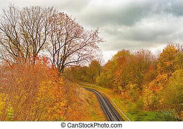 beau, piste, parc, ou, automne, tramway, fog., ferroviaire
