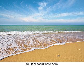 beau, plage, côte
