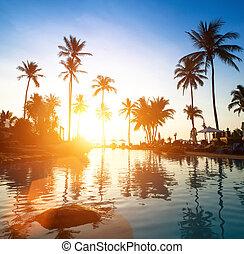 beau, plage coucher soleil, tropics.