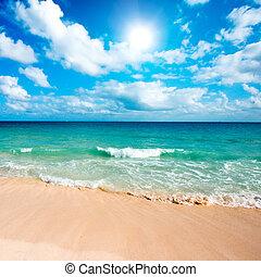 beau, plage, et, mer
