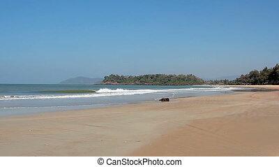 beau, plage, jour ensoleillé, vide