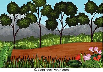 beau, plante, paysage, arbres