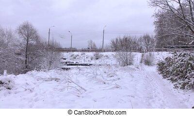 beau, pont, coup, hiver, neigeux, autobus, en mouvement, forêt, moule, 4k