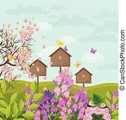 beau, printemps, maisons, vecteur, oiseau, carte