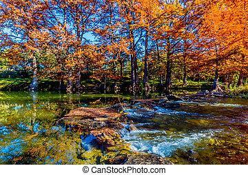 beau, rivière, arbres, automne